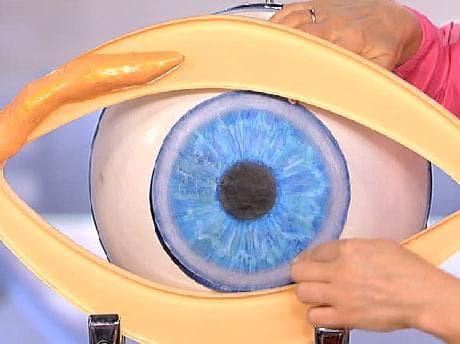 Жировик на внутреннем веке глаза — Уход за лицом