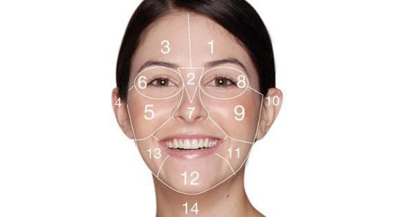 Прыщи на лице за какие органы отвечают: подробная информация