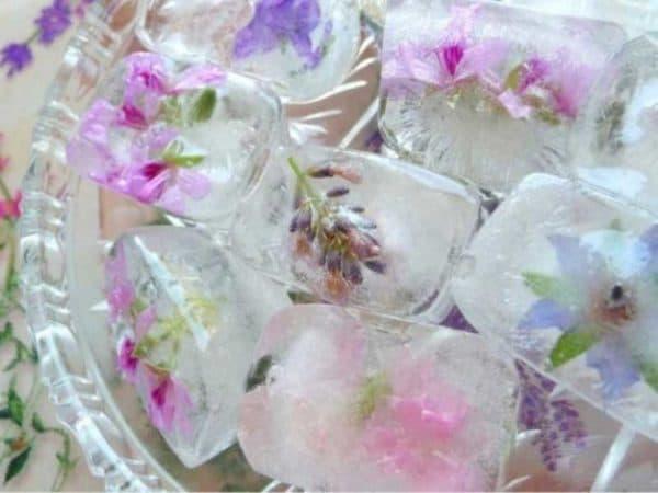 кубики льда для лица цветы липы