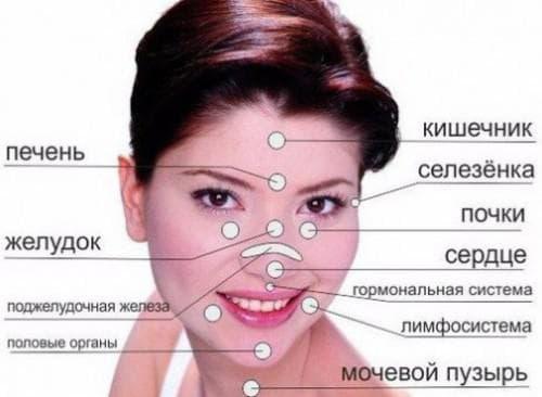 прыщи на лице-проблемы с органами человека