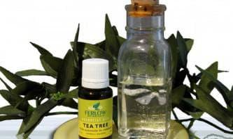 чайное дерево эфирное масло применение от прыщей