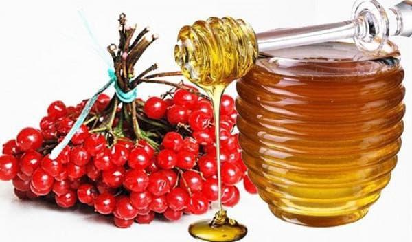 калина и мед от жировиков