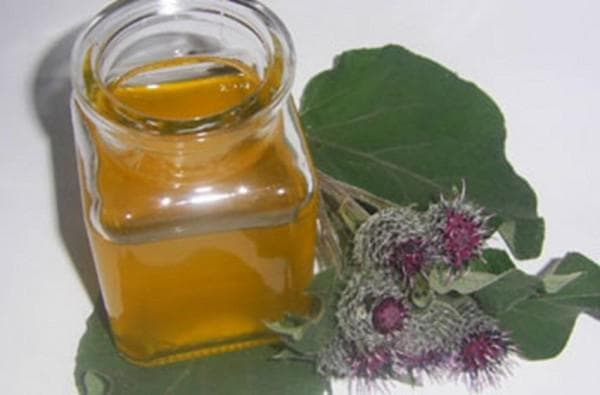 льняное масло и корень лопуха