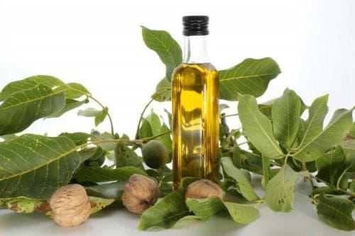 листья грецкого ореха для загара